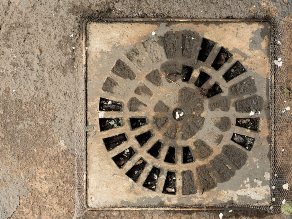 floor drain backup